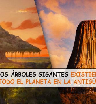 La teoría de los árboles gigantes que existieron en la antigüedad